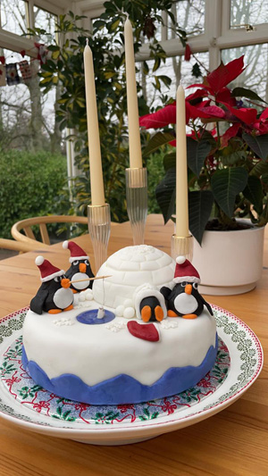 Great Cosmics Christmas Cake Challenge results